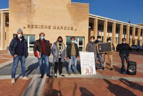 «La scuola non è il problema»: sit-in del Comitato Priorità Marche in Regione