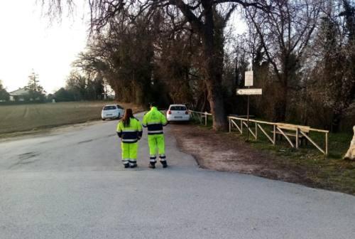Osimo, l'amministrazione punta al verde pubblico. Ecco i progetti