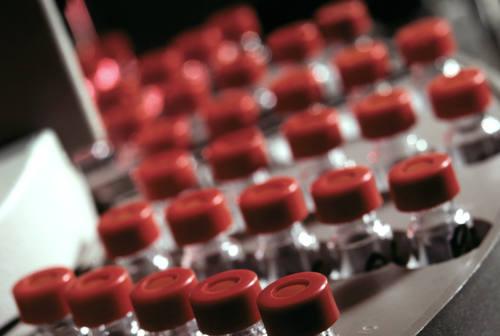 Marche verso ordinanza restrittiva: 5 comuni sorvegliati speciali. Acquaroli: «Spingere su vaccinazione»