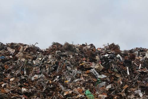 Reati ambientali in aumento, l'illegalità deturpa le Marche