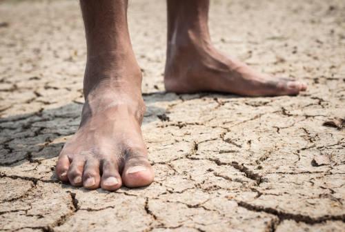 Giornata dell'Acqua, Viva Servizi lancia una sfida social e un corto