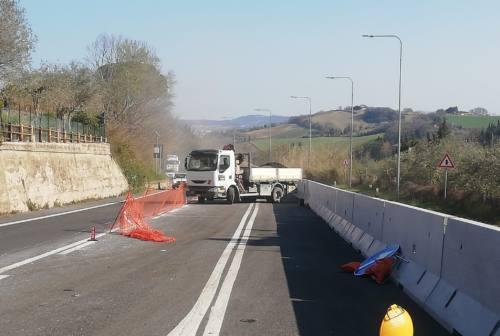 Siligata, Ricci: «Alzata di scudi contro lo spartitraffico, Pesaro perde 1,6 milioni di investimenti»