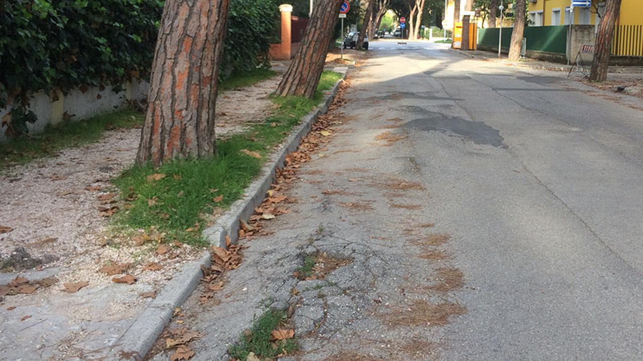 Grossi disagi alla circolazione in viale Anita Garibaldi a Senigallia dove si ipotizza in futuro anche una pista ciclabile