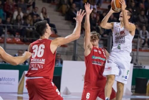Basket, la Luciana Mosconi Ancona si carica e prepara il derby con la Goldengas Senigallia