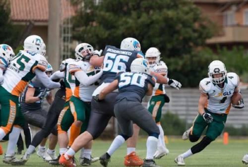 I Dolphins Ancona si godono la prima vittoria e guardano già al futuro