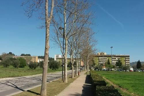 Pd Ascoli : «Attrezzare aree verdi abbandonate e ciclabili per fitness e percorsi per stili di vita sani»