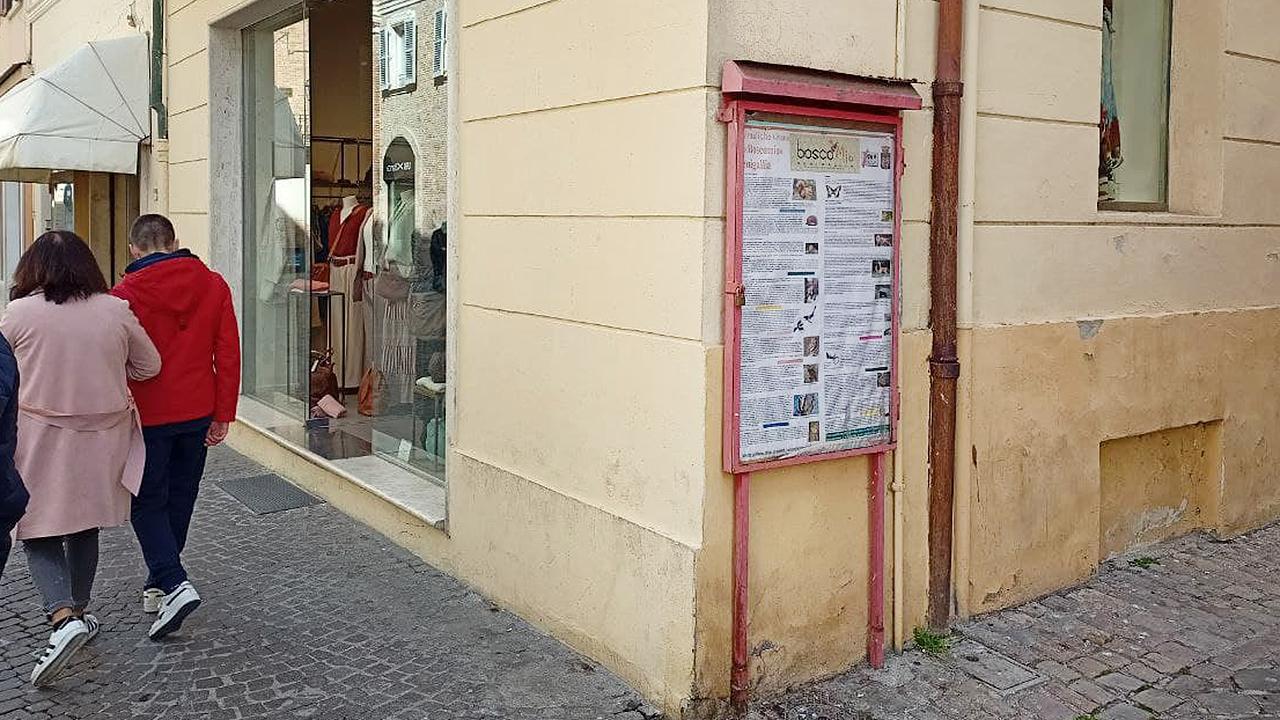 Una delle bacheche informative di partiti e associazioni che verranno rimosse dal centro storico di Senigallia
