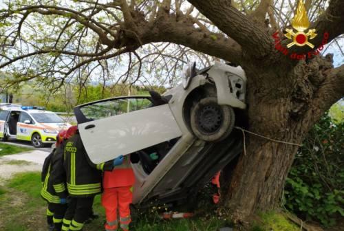 Cupramontana, auto fuoristrada finisce contro un albero: ferita una donna