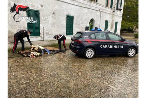 Morro d'Alba, i Carabinieri eroi premiati dal sindaco