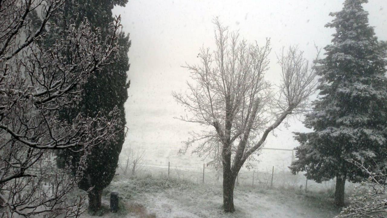 Urbino, nevicata