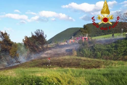 Incendio a Portonovo, due ettari di vegetazione in fumo