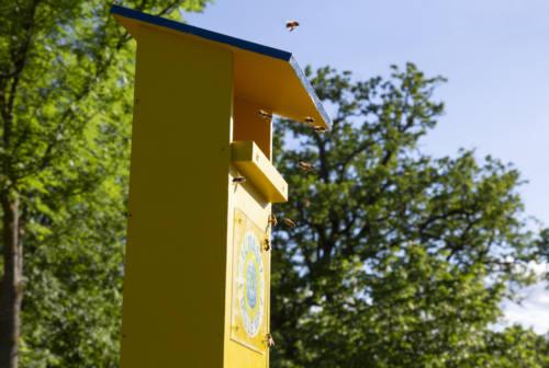 Discariche di Ca' Lucio di Urbino e Asprete di Tavullia, un monitoraggio dell'inquinamento grazie alle api