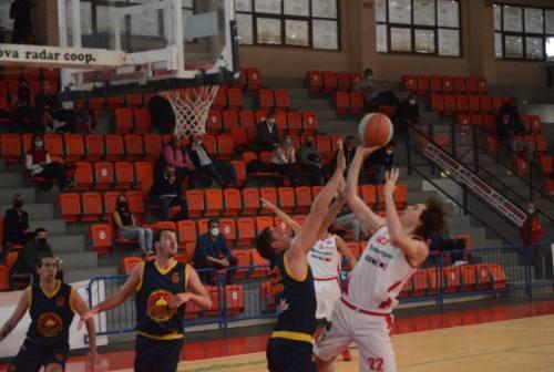 Basket, la Goldengas Senigallia si gode i playoff: c'è il Taranto sulla strada dei biancorossi