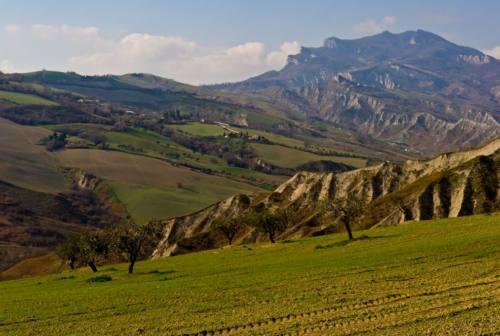 Piano di sviluppo rurale, a Montalto delle Marche la Regione si confronta con imprese e associazioni