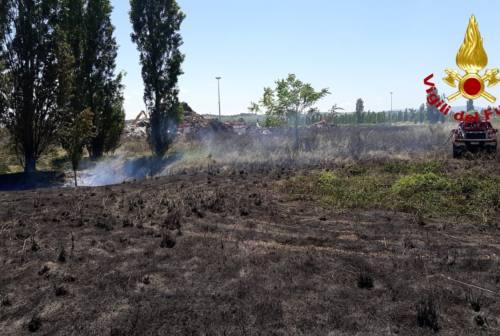 Jesi, incendio sterpaglie alla Coppetella: intervento dei Vigili del Fuoco