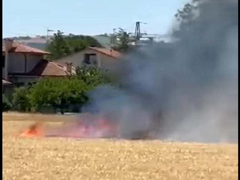 Incendio campo agricolo