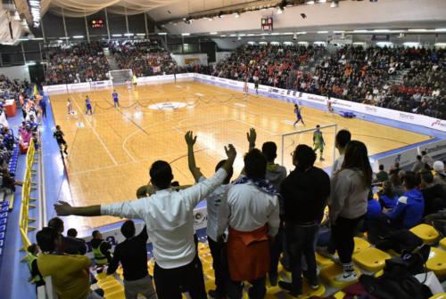 Futsal, ora è ufficiale: le Final Four scudetto si giocheranno in casa dell'Italservice Pesaro