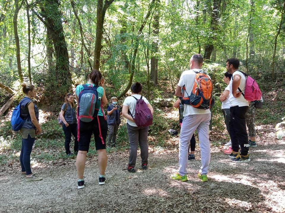 L'immersione forestale alla Selva