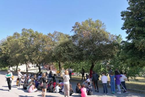 Falconara, per la Giornata dei Giusti la scuola Ferraris dedica un albero alla famiglia Virgili che protesse e salvò degli ebrei