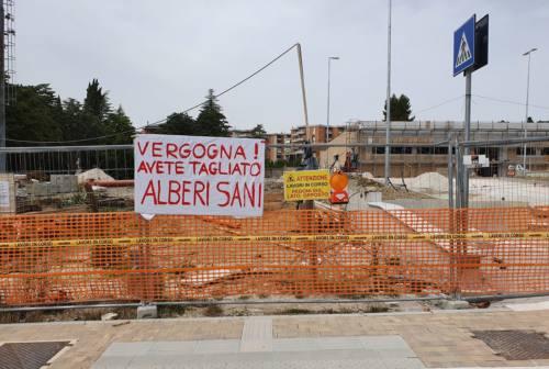 Macerata, protesta dei residenti a San Francesco. «Vergogna! Avete tagliato alberi sani»