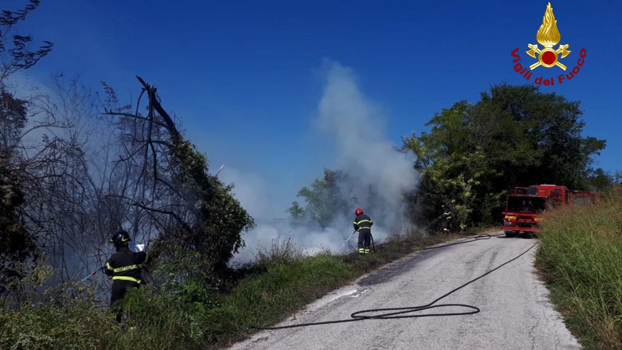 incendio delle sterpaglie, righi divampati tra la vegetazione, intervento dei vigili del fuoco