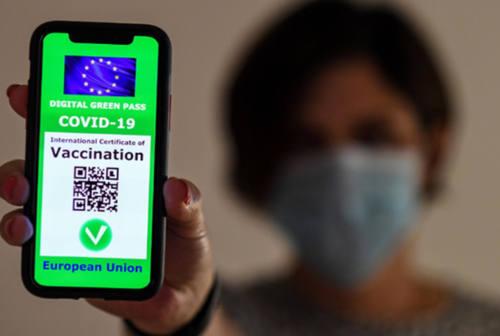 Confcommercio Fano sul green pass: «A questo punto meglio estendere l'obbligo vaccinale»
