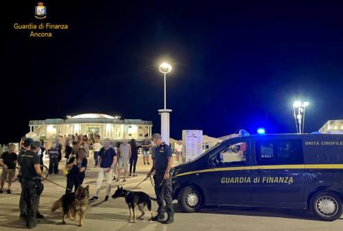 Senigallia, ancora controlli alla movida: sequestrati articoli contraffatti e droga