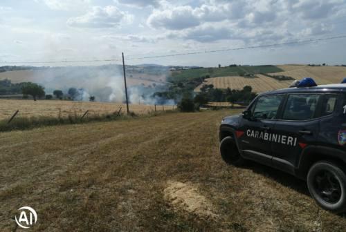 Incendio a Piticchio, in fiamme un campo agricolo