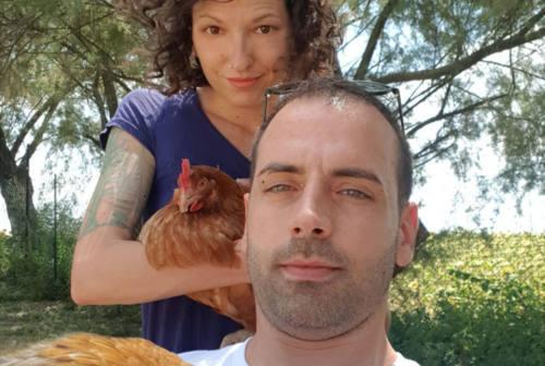 Due ragazzi, 20 galline adottate e un Pollo-Locker. A Polverigi la mini fattoria Pollallegro di Federica e Marco