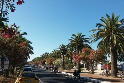 Vandalismi dopo Italia-Spagna: Comune di San Benedetto chiude il lungomare per la finale