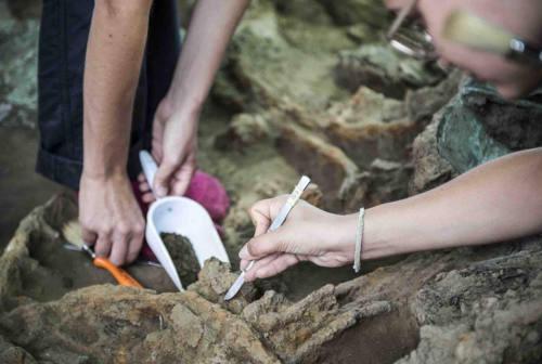Archeologia a Corinaldo, dalla formazione alla valorizzazione