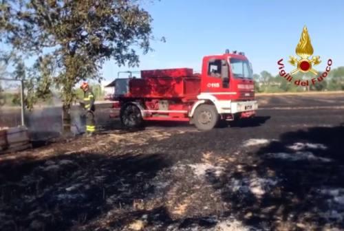 Allarme incendi, bruciano i campi a Chiaravalle e Jesi