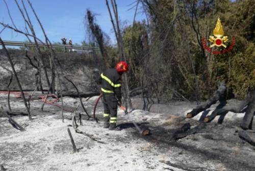 Maxincendio a Castelfidardo: indagini in corso. Il titolare del Numana blu: «Il pranzo, poi fuliggine e vento caldo»