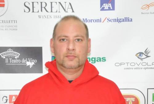 Basket, Goldengas Senigallia: Andrea Peverada confermato nello staff tecnico della prima squadra