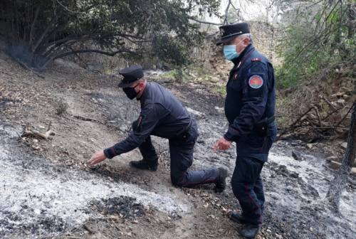 Mogliano, causa l'incendio di un bosco. Denunciato un 63enne