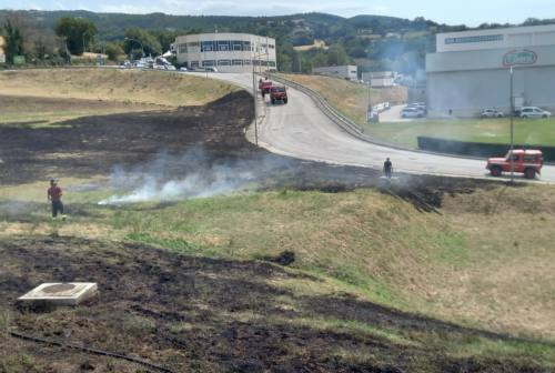 Cingoli, incendio nella zona industriale. A fuoco un'area di 300 metri quadri