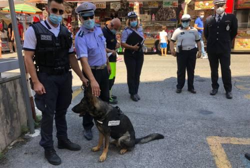 Macerata, quasi mille persone controllate alla fiera di San Giuliano. Quattro multe, denunciata una donna