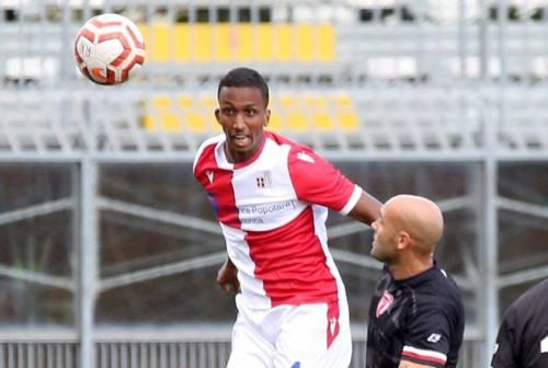 Calcio, il Fano riparte con i primi quattro acquisti per la Serie D