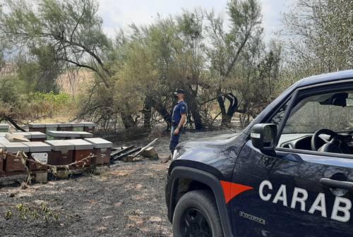 Maiolati: incendio in via Monteschiavo, indagato un apicoltore