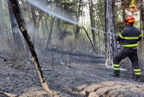 A fuoco 1,5 ettari di bosco alle Cesane di Fossombrone, le operazioni di bonifica