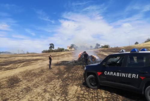 Circoscritto l'incendio di Jesi, distrutti 400 ettari di terreno e individuati i responsabili