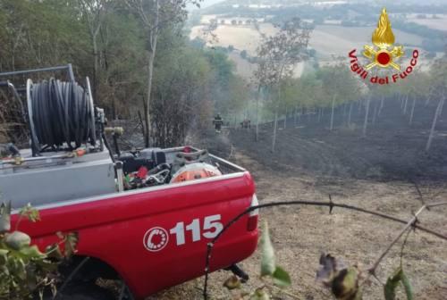 Allarme incendi: a Mergo bruciano due ettari di bosco