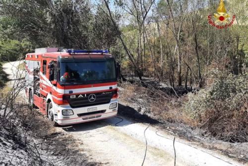 Maiolati Spontini: si incendia il trattorino tagliaerba e va a fuoco tutto il capanno
