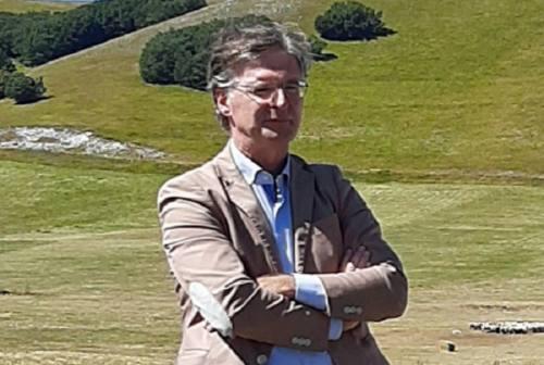 Vitelli sbranati a Bolognola, il Parco dei Sibillini: «Attiveremo le fototrappole»