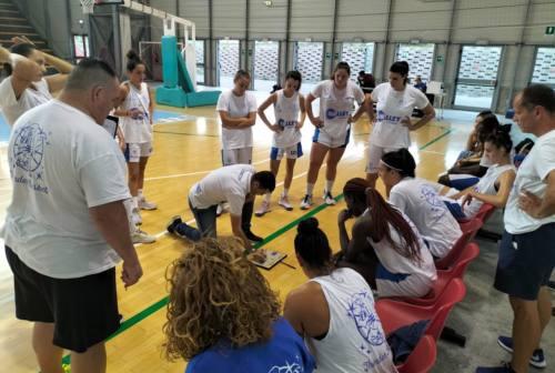 Basket femminile, la Halley Thunder Matelica Fabriano è nel pieno della preparazione