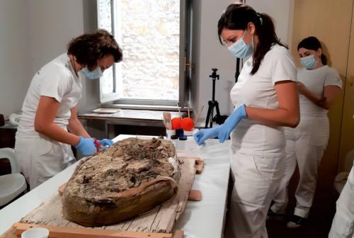 Al Museo archeologico di Ascoli un cantiere-scuola per il restauro della necropoli di Colle Vaccaro