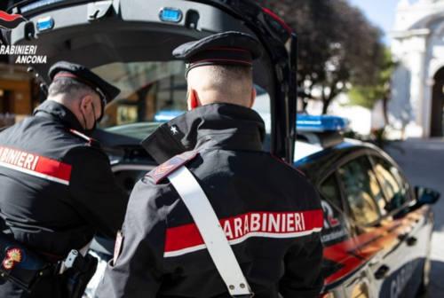 Furto di attrezzature mediche a Senigallia: ladri in azione nel weekend