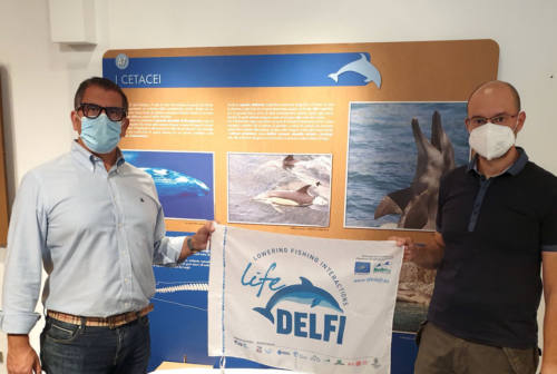 Parco del Conero e Cnr insieme per i delfini. Silvetti: «La tutela della fauna marina è uno dei nostri obiettivi principali»