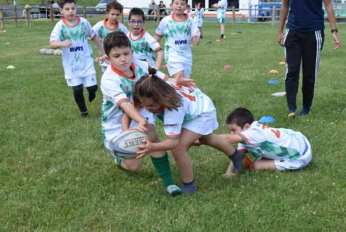 Palla ovale, il Rugby Open Day nazionale è di scena anche a Jesi