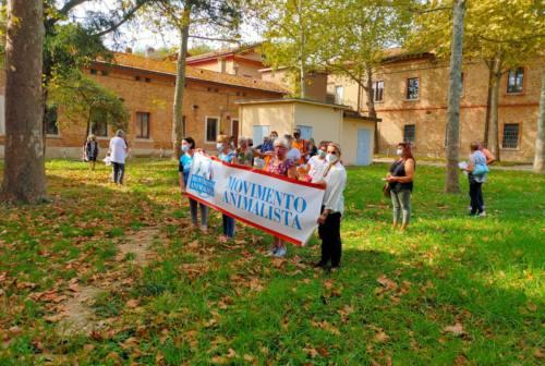 Ancona, animalisti protestano all'ex Crass: «Riattivate le sterilizzazioni dei gatti»